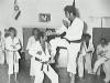 dr.dennis hanover, dennis survival ju-jitsu