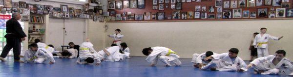 Dennis Survival Ju-Jitsu